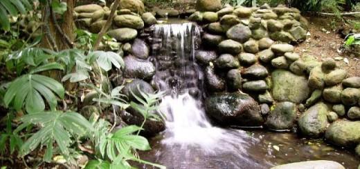 agua-eden-manantiales