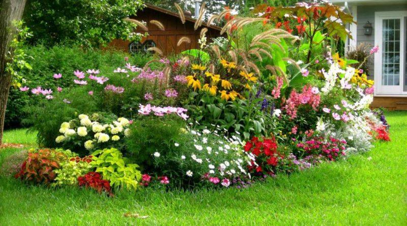 Cómo mantener un jardín siempre impecable